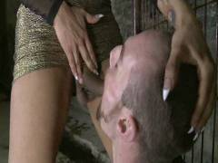 TS Seduction: The First Ever TS Gang Bang On TS Seduction – The Gangster Gang bang